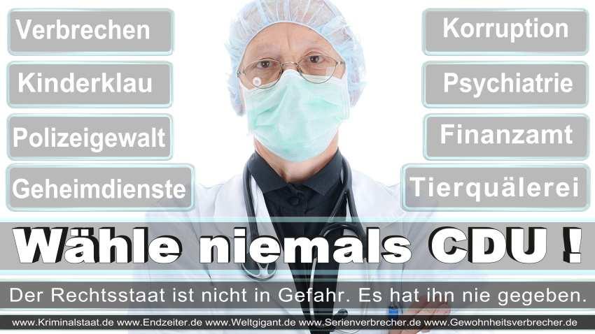 CDU-Wahlplakate-2016 (69)